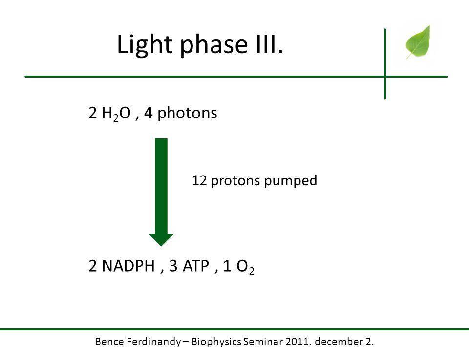 Bence Ferdinandy – Biophysics Seminar 2011. december 2.