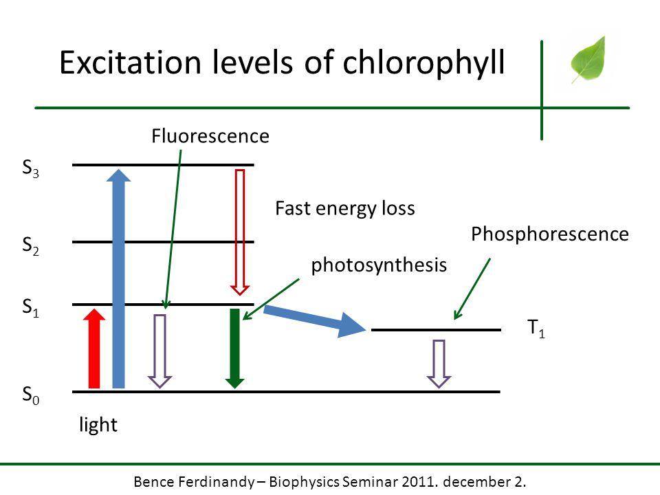 Excitation levels of chlorophyll