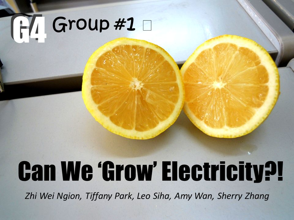 Can We 'Grow' Electricity !