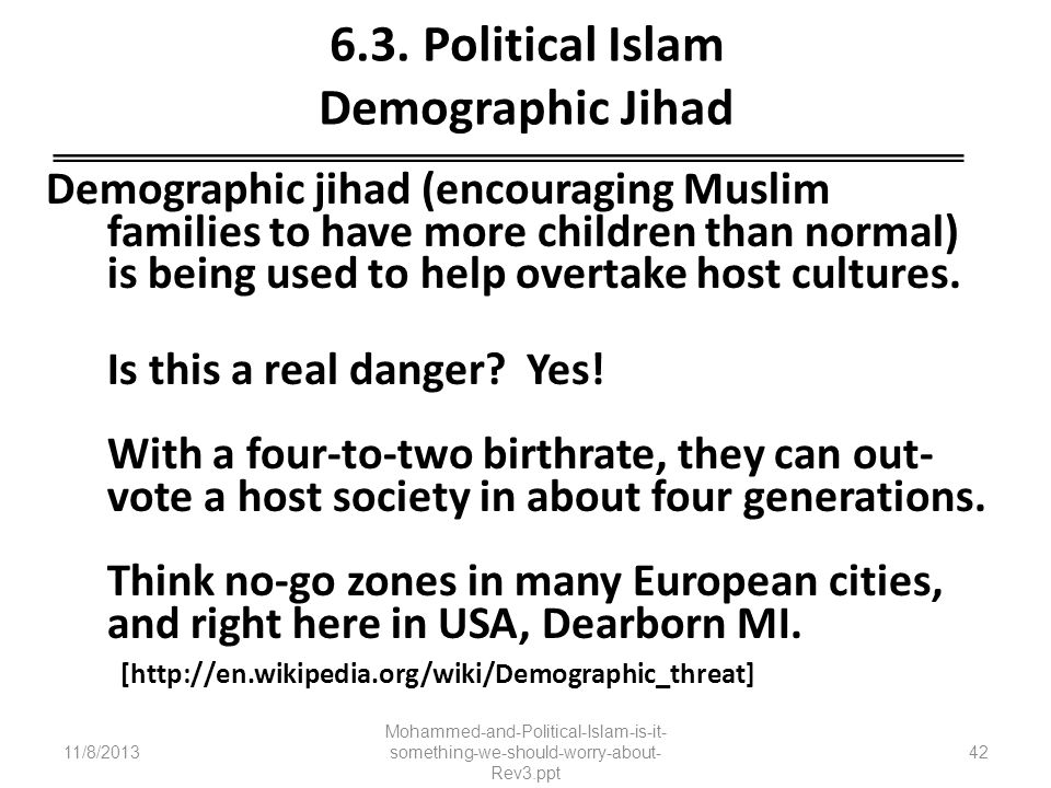 6.3. Political Islam Demographic Jihad