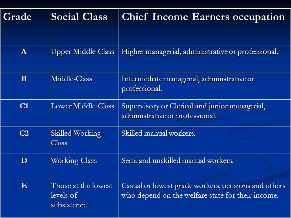 Chief Income Earners occupation