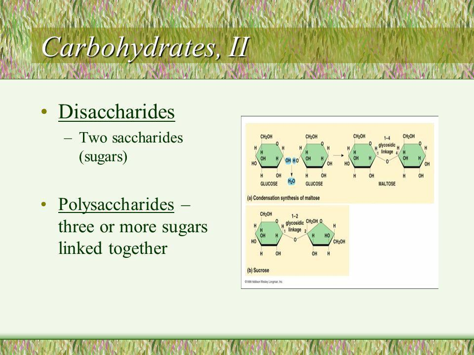 Carbohydrates, II Disaccharides