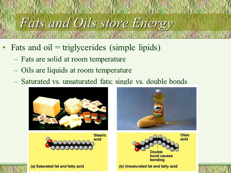 Fats and Oils store Energy