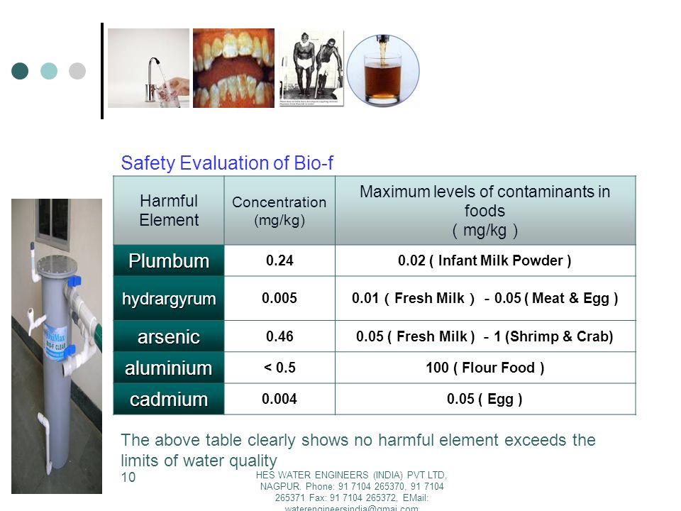 Safety Evaluation of Bio-f Plumbum