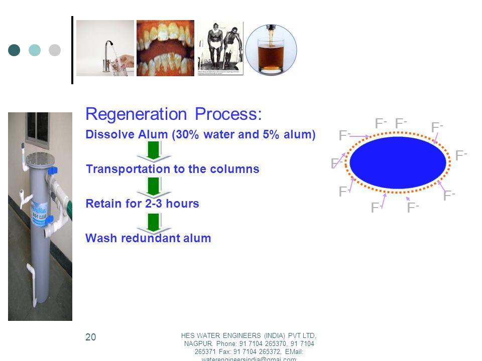 Regeneration Process: