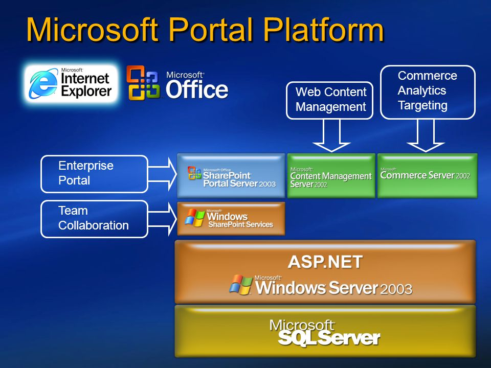 Microsoft Portal Platform