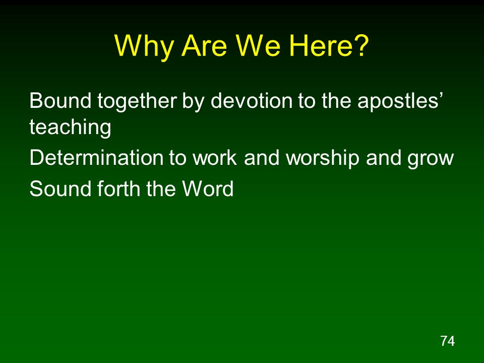 Why Are We Here Bound together by devotion to the apostles' teaching