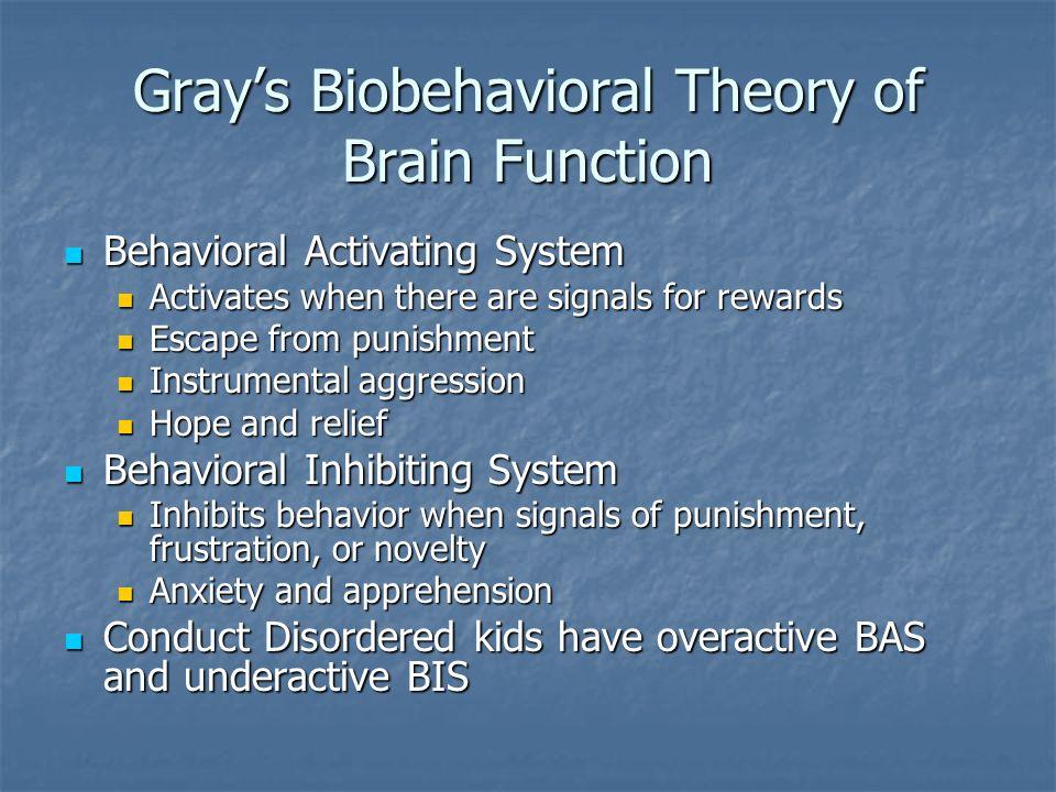 Gray's Biobehavioral Theory of Brain Function