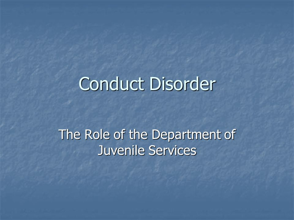 The Role of the Department of Juvenile Services