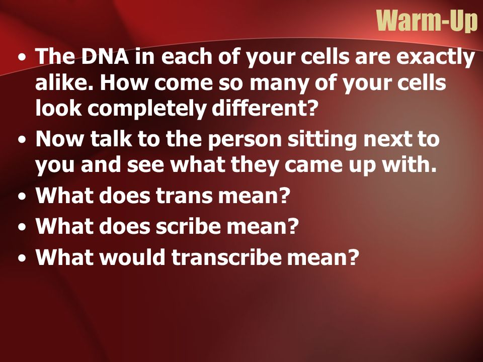 Warm-Up The DNA in each of your cells are exactly alike. How come so many of your cells look completely different