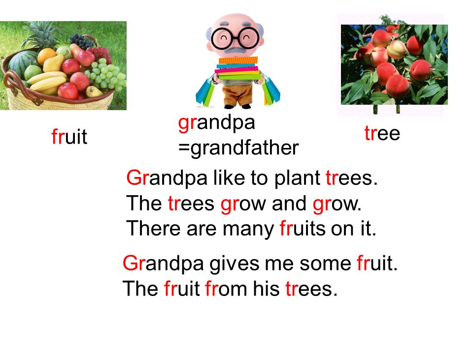 grandpa =grandfather. tree. fruit. Grandpa like to plant trees. The trees grow and grow. There are many fruits on it.