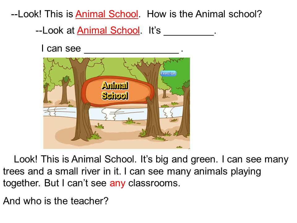 --Look! This is Animal School. How is the Animal school