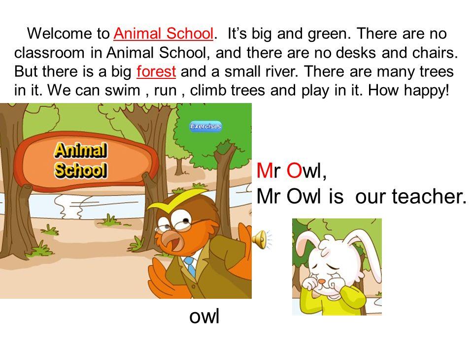 Mr Owl, Mr Owl is our teacher. owl