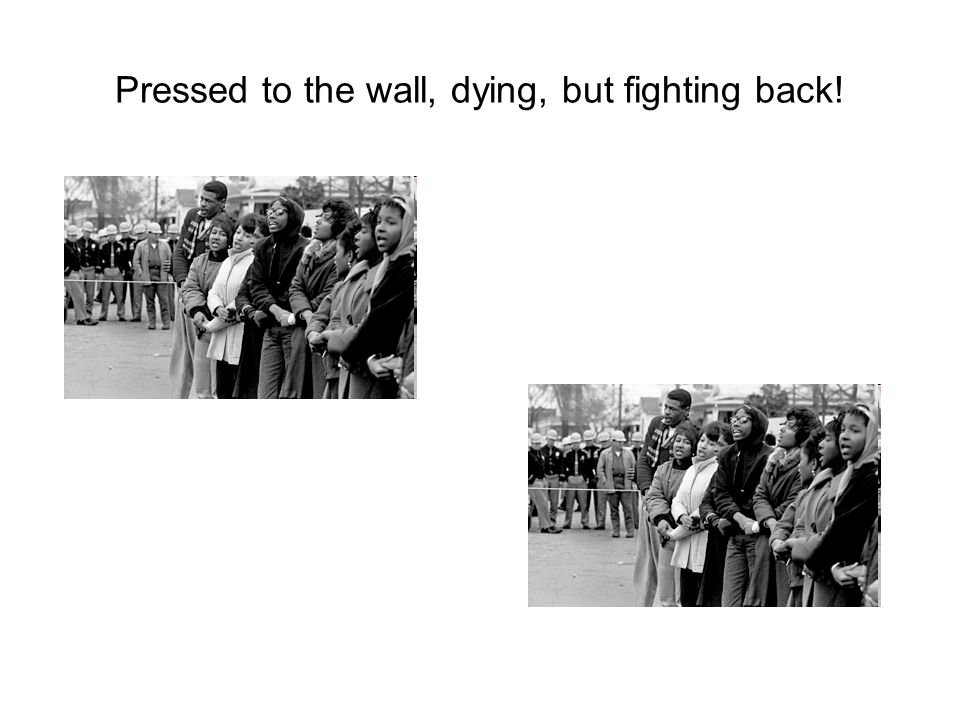 Pressed to the wall, dying, but fighting back!