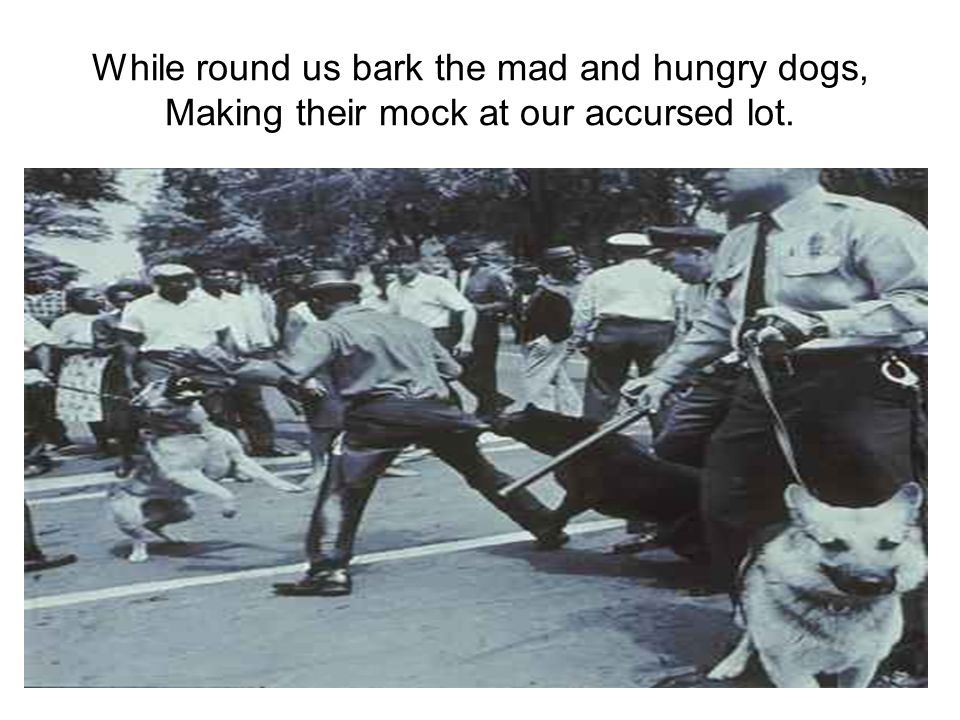 While round us bark the mad and hungry dogs, Making their mock at our accursed lot.