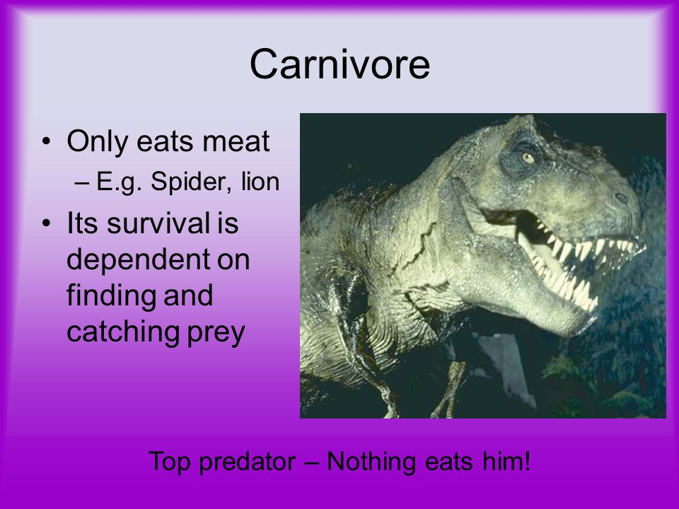 Carnivore Only eats meat