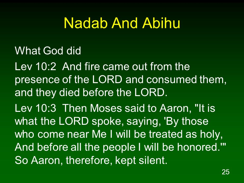Nadab And Abihu What God did
