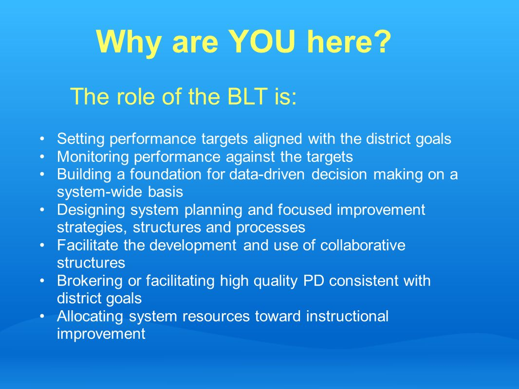 Why are YOU here The role of the BLT is: