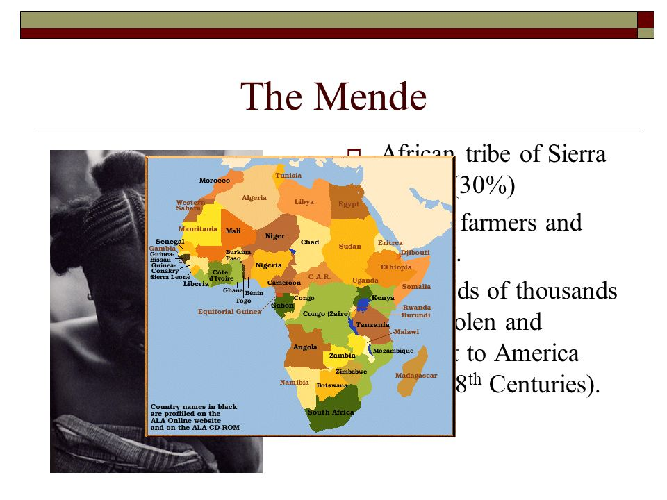 The Mende African tribe of Sierra Leone (30%)