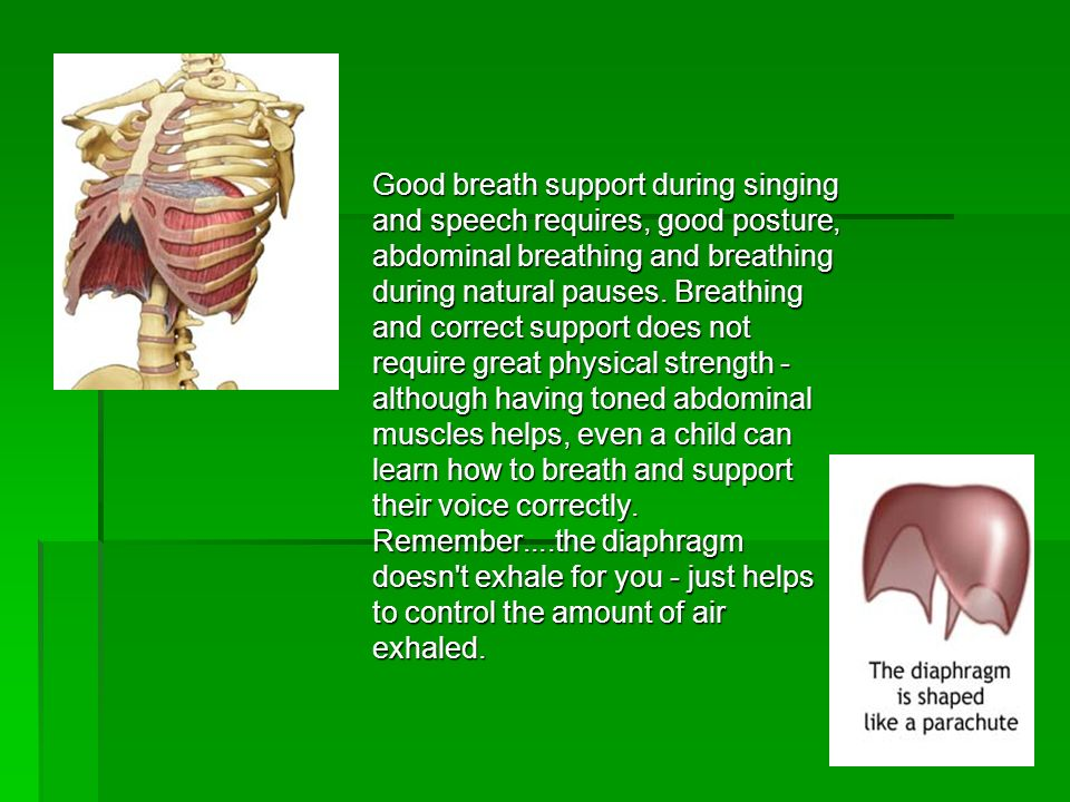Good breath support during singing and speech requires, good posture, abdominal breathing and breathing during natural pauses.