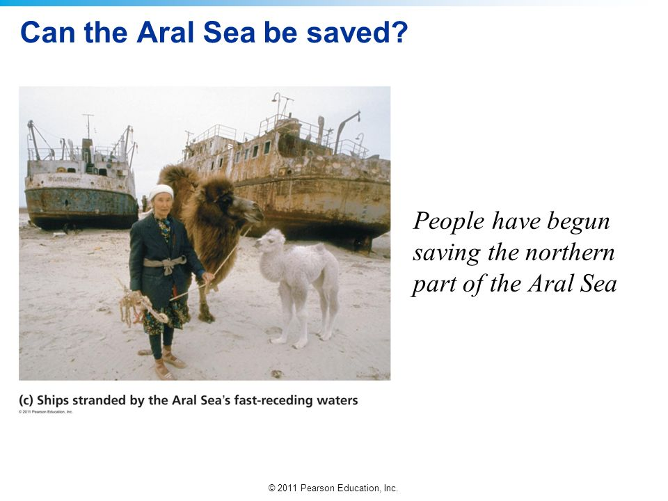 Can the Aral Sea be saved