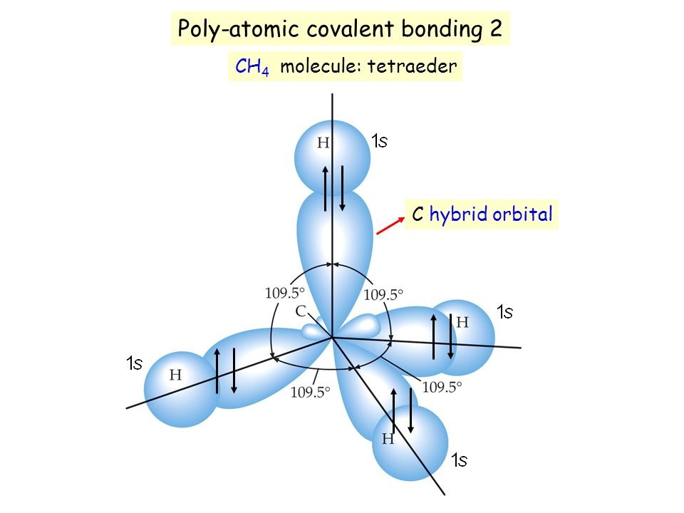 Poly-atomic covalent bonding 2
