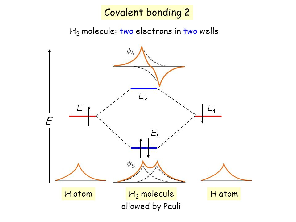 Covalent bonding 2 E H2 molecule: two electrons in two wells H atom
