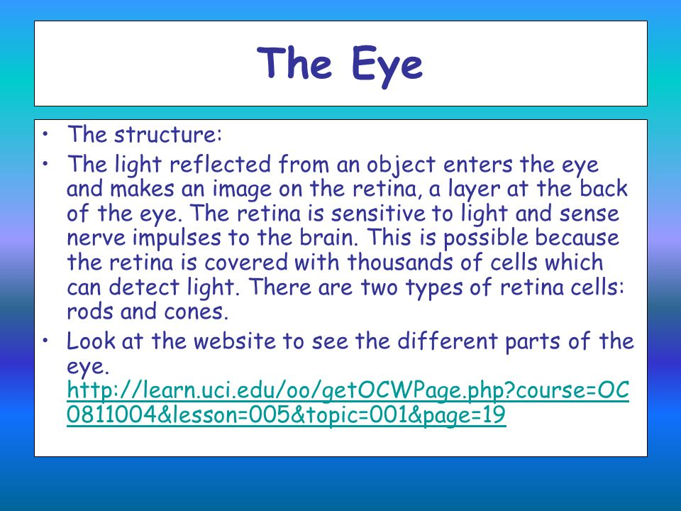 The Eye The structure: