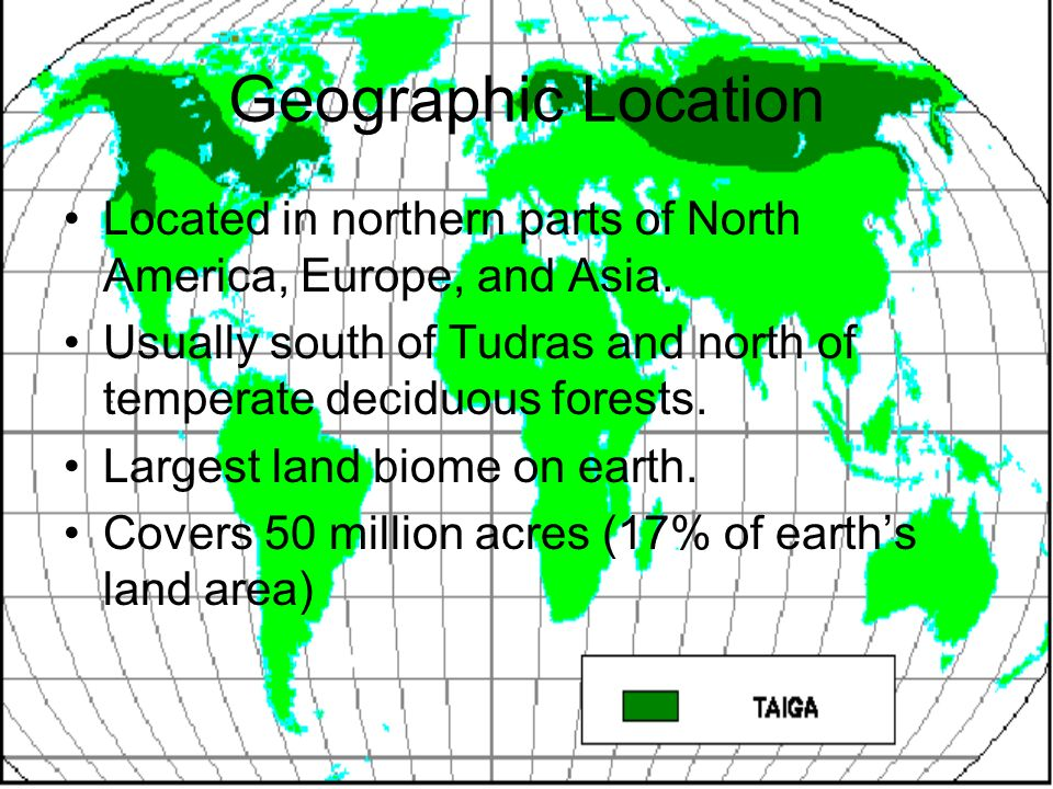 Geographic Location Located in northern parts of North America, Europe, and Asia. Usually south of Tudras and north of temperate deciduous forests.