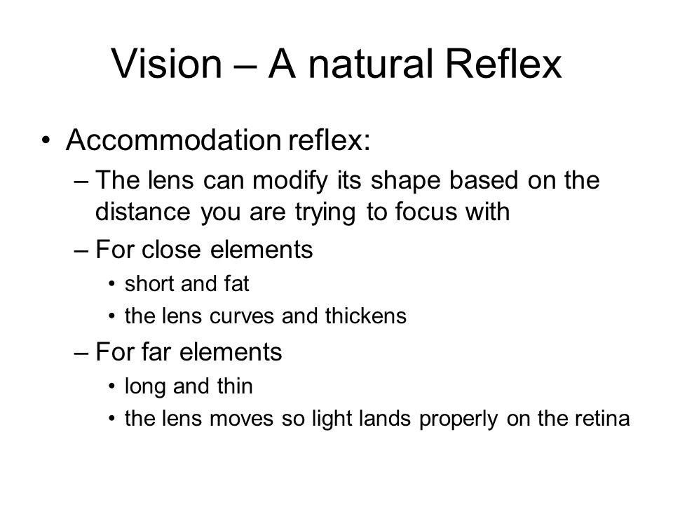 Vision – A natural Reflex