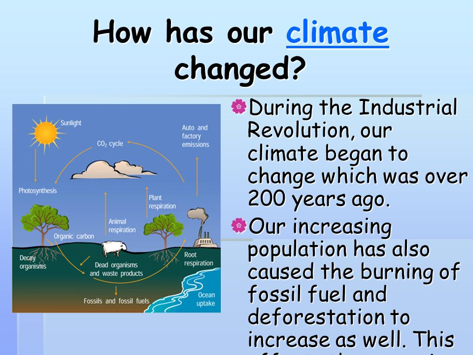 How has our climate changed