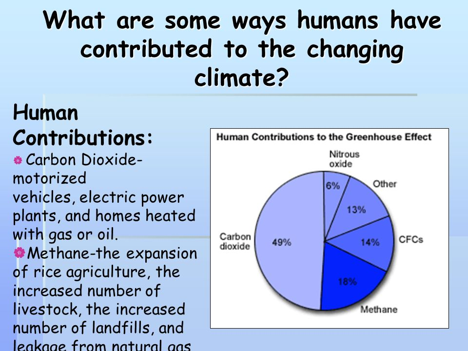 What are some ways humans have contributed to the changing climate