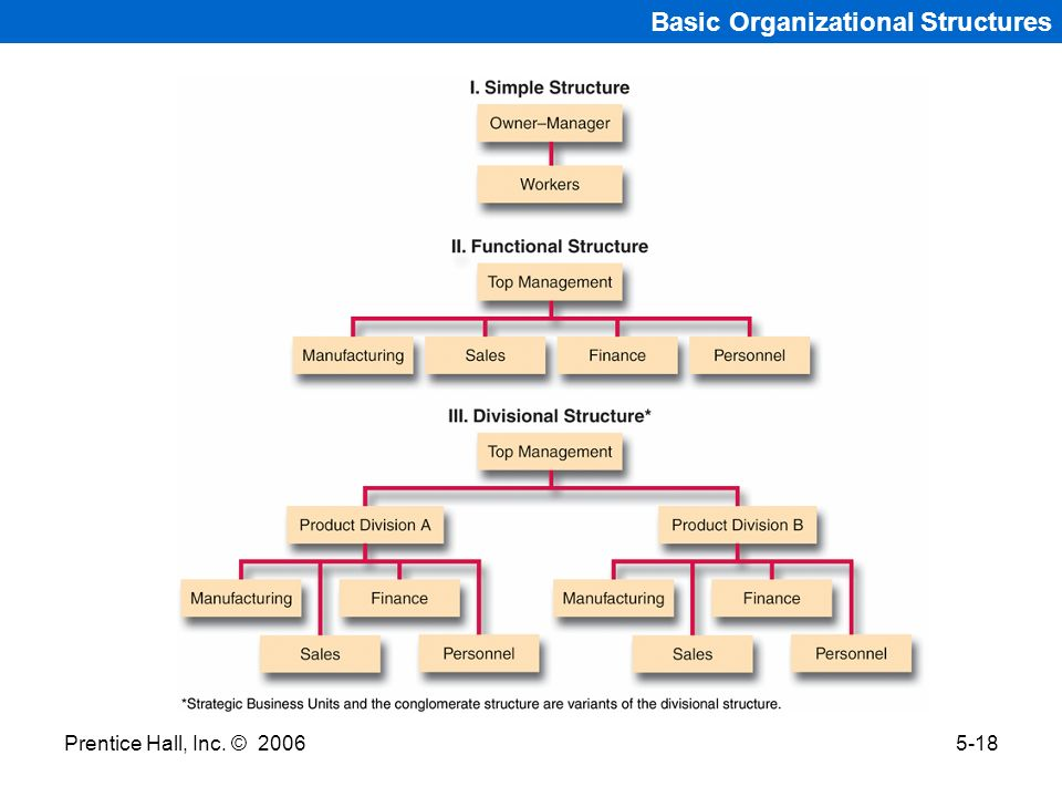 Basic Organizational Structures