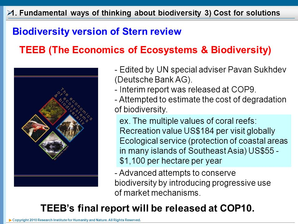 Biodiversity version of Stern review