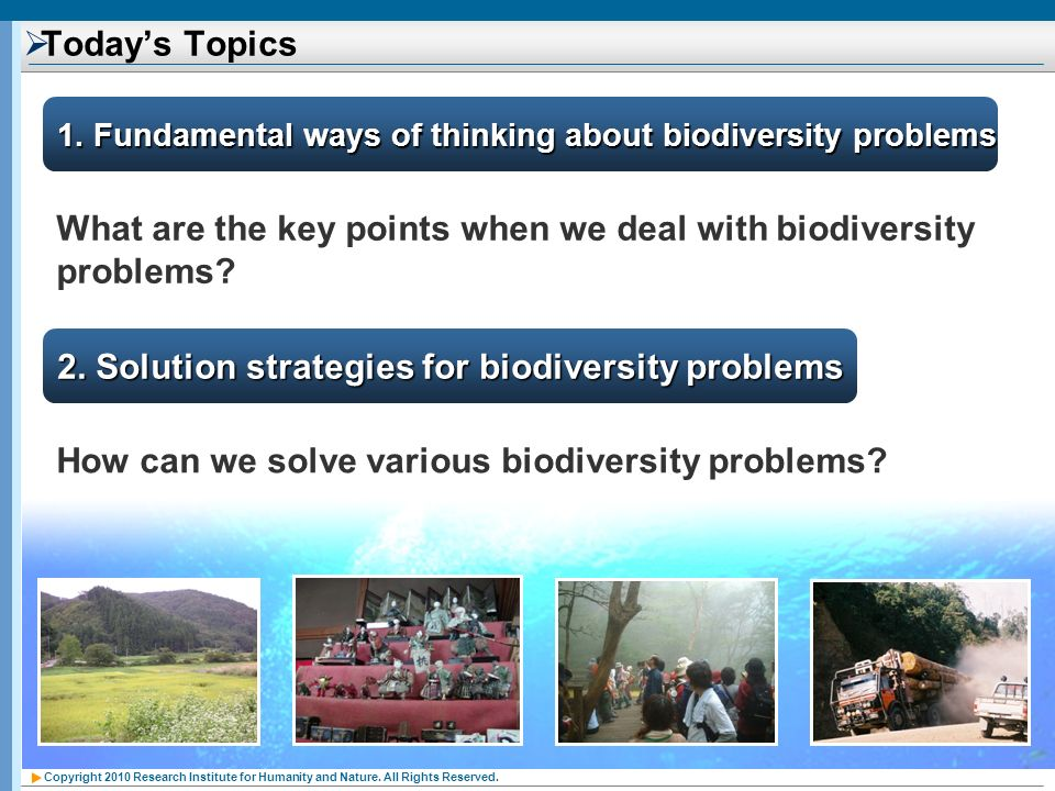 What are the key points when we deal with biodiversity problems