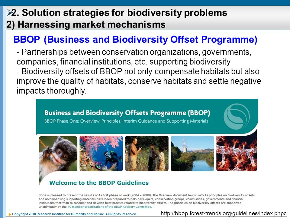 BBOP (Business and Biodiversity Offset Programme)