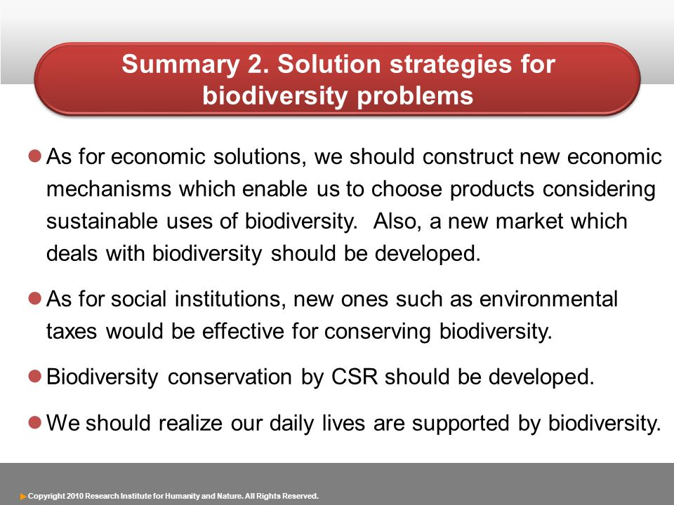 Summary 2. Solution strategies for biodiversity problems