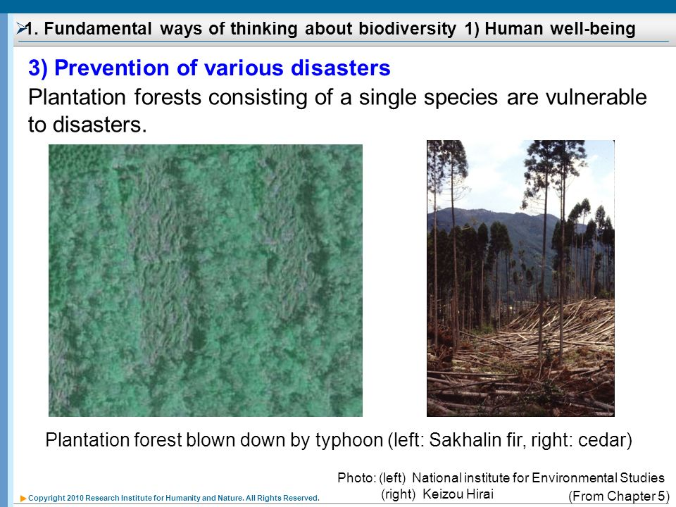 1. Fundamental ways of thinking about biodiversity 1) Human well-being