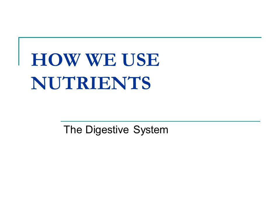HOW WE USE NUTRIENTS The Digestive System