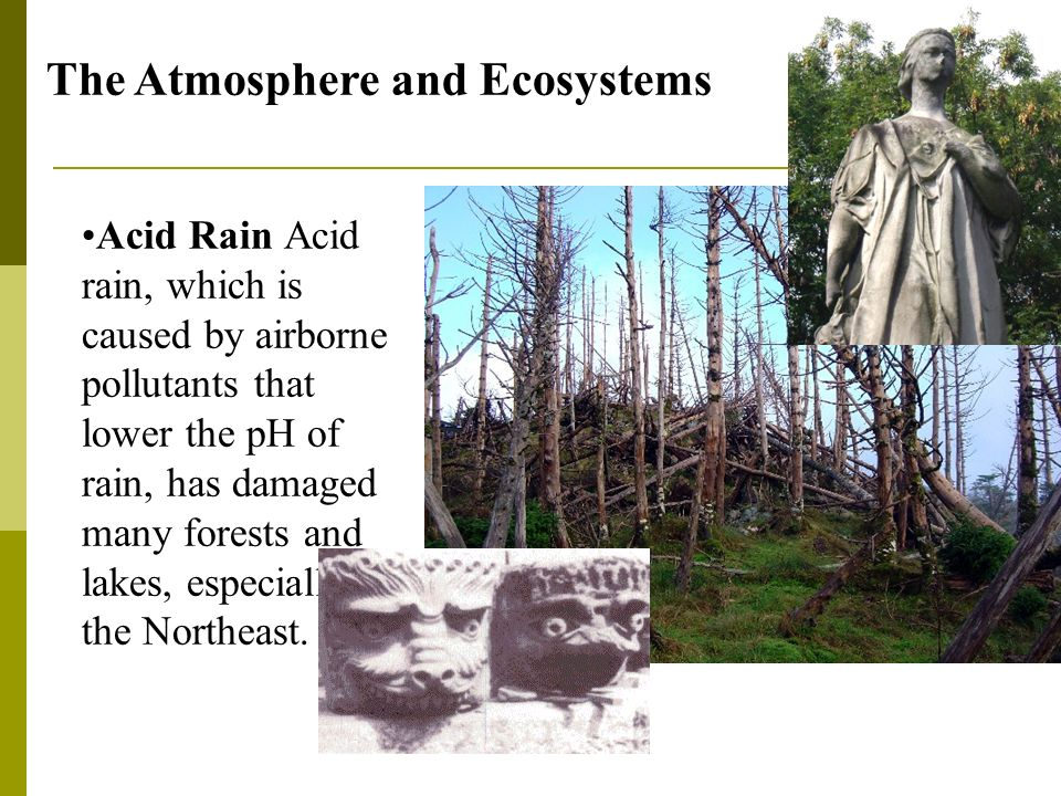 The Atmosphere and Ecosystems