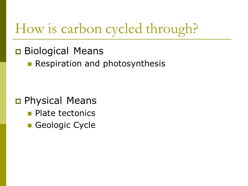 How is carbon cycled through