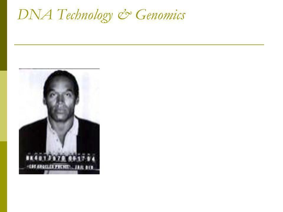 DNA Technology & Genomics