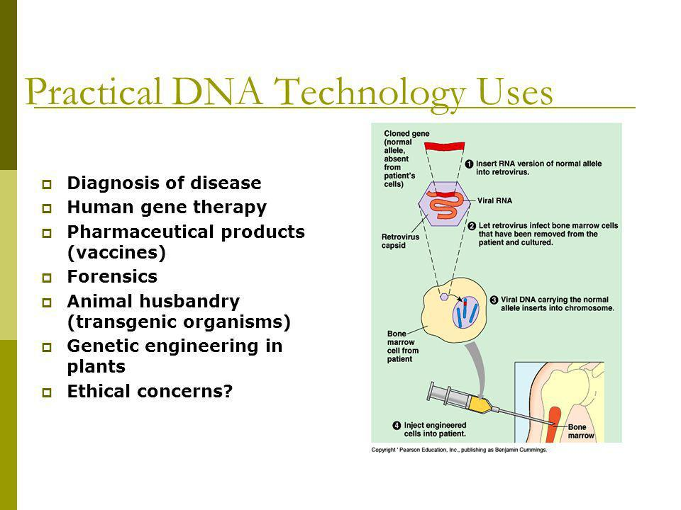 Practical DNA Technology Uses