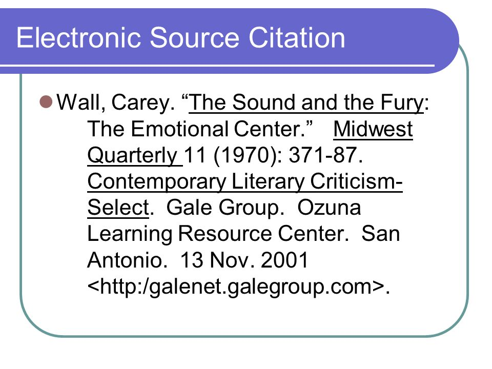 Electronic Source Citation