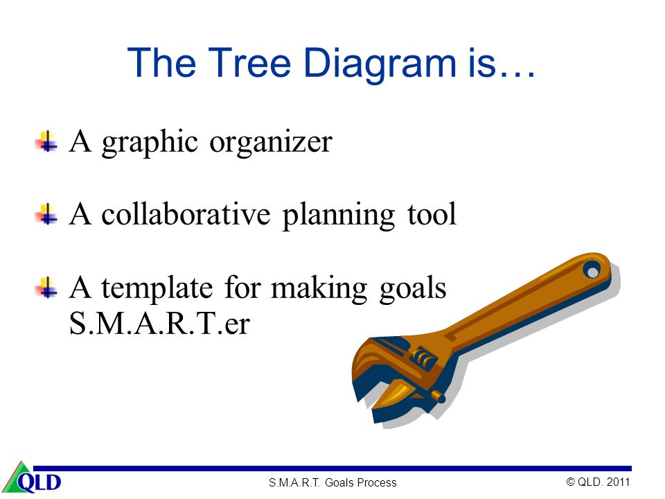 The Tree Diagram is… A graphic organizer A collaborative planning tool