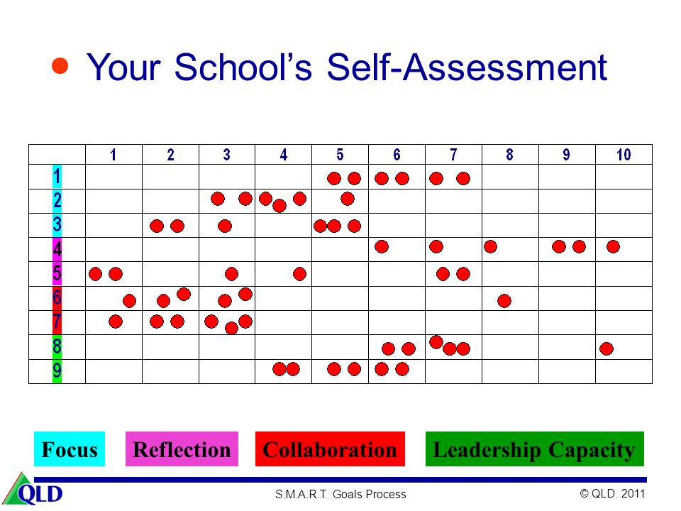 Your School's Self-Assessment