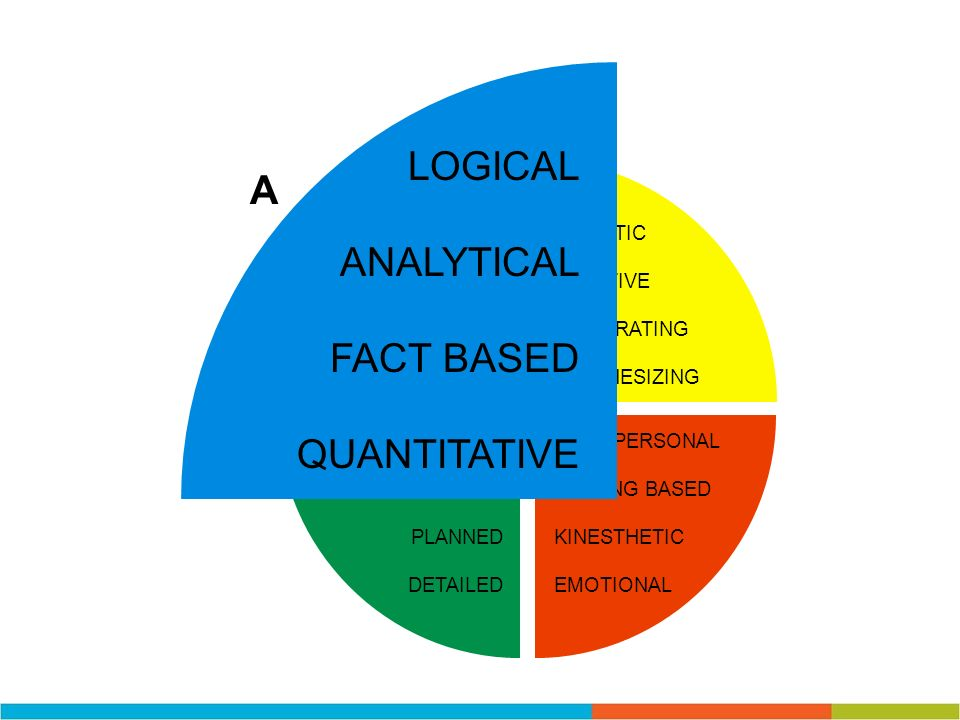 LOGICAL A ANALYTICAL FACT BASED QUANTITATIVE HOLISTIC INTUITIVE