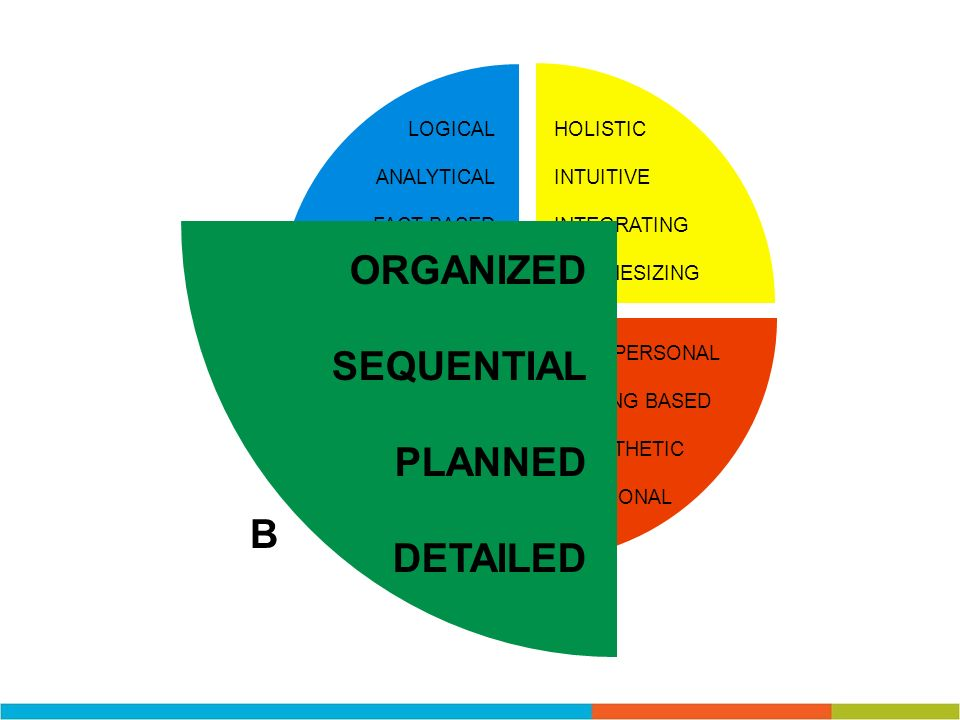ORGANIZED SEQUENTIAL PLANNED DETAILED B LOGICAL ANALYTICAL FACT BASED