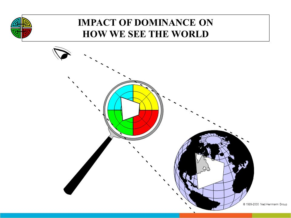 IMPACT OF DOMINANCE ON HOW WE SEE THE WORLD