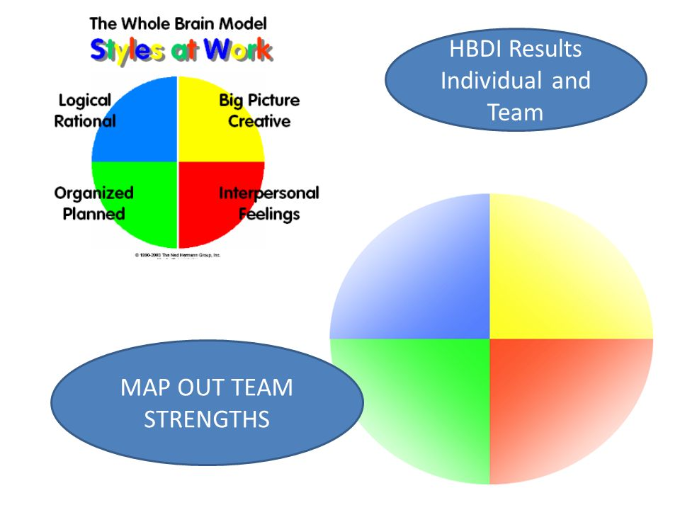 HBDI Results Individual and Team MAP OUT TEAM STRENGTHS
